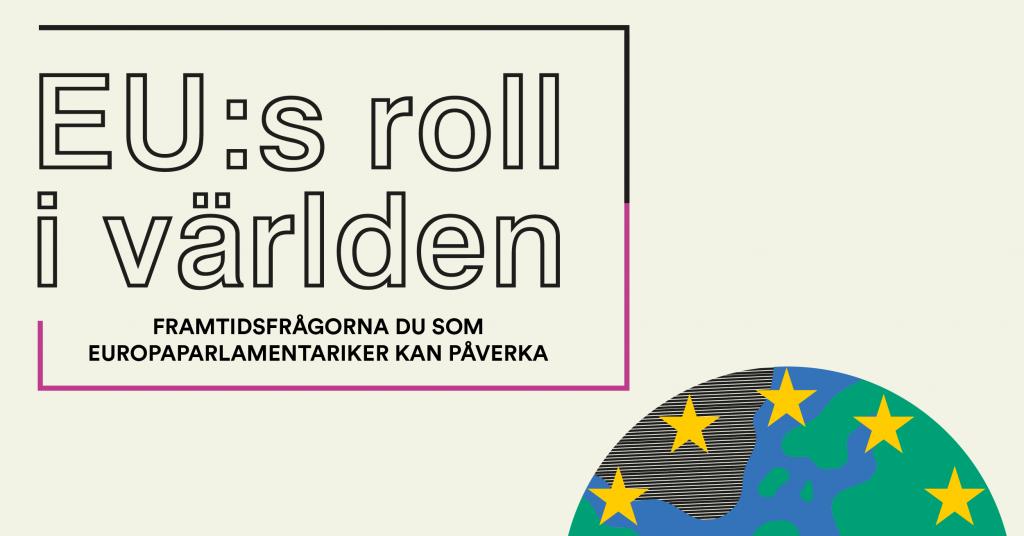 EU:s roll i världen – frågorna du som Europaparlamentariker kan påverka