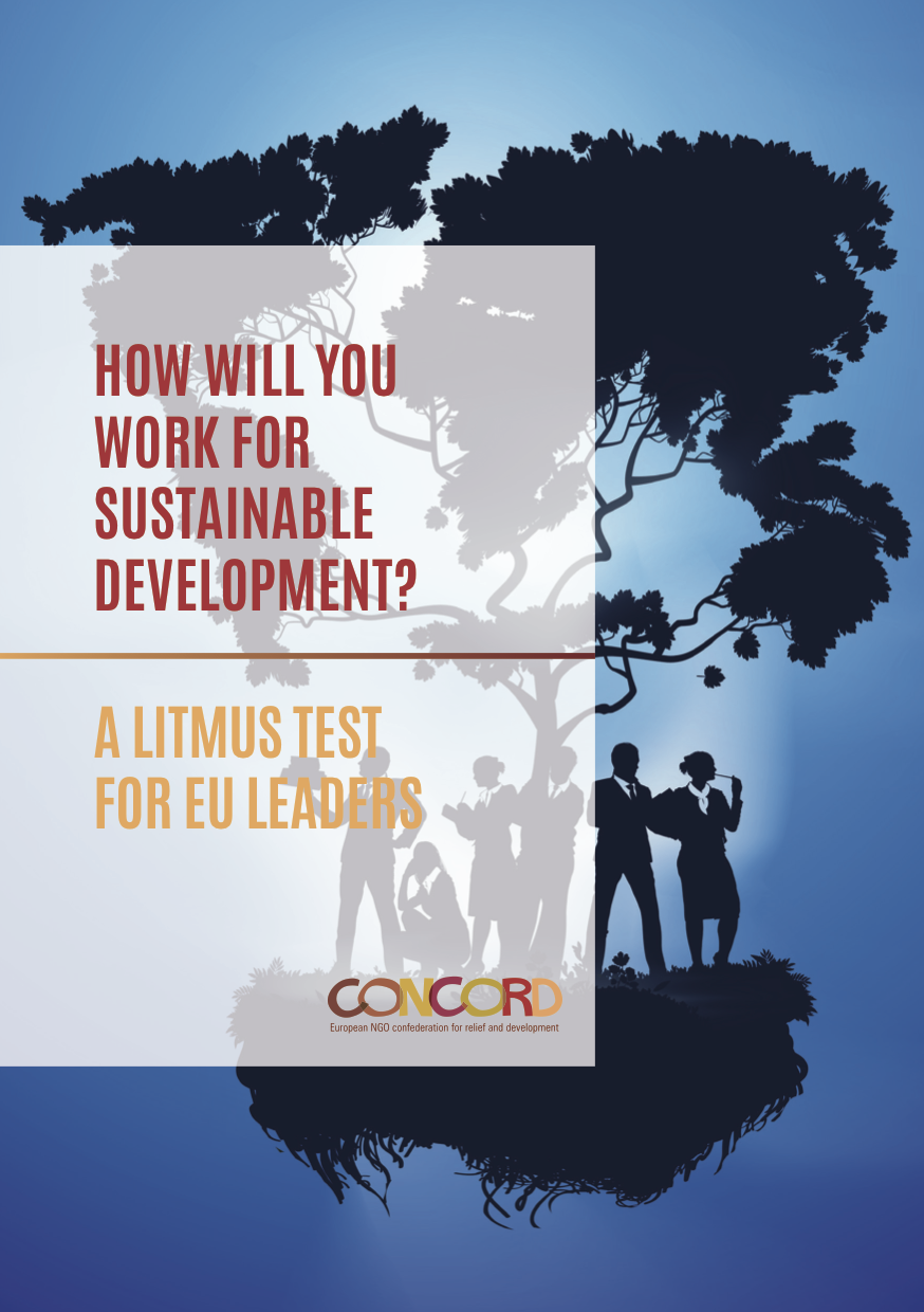 How will you work for sustainable development? A Litmus Test for EU leaders